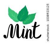 Lettering Mint. Handwritten...