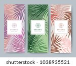 branding packaging palm and... | Shutterstock .eps vector #1038935521