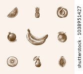 hand drawn fruits sketches set. ... | Shutterstock .eps vector #1038951427