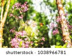 a monarch butterfly and pink... | Shutterstock . vector #1038966781