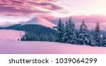 wonderful natural background.... | Shutterstock . vector #1039064299