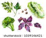 watercolor painted collection... | Shutterstock .eps vector #1039146421