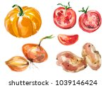 watercolor painted collection... | Shutterstock .eps vector #1039146424