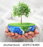 eco concept. hands hold a half... | Shutterstock . vector #1039176484