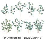 hand painted silver dollar... | Shutterstock .eps vector #1039220449
