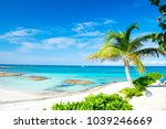 palm tree  blue sea  sky in... | Shutterstock . vector #1039246669