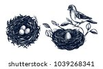 Bird Nest With Branches Set ...