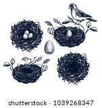 bird nest with branches set ... | Shutterstock .eps vector #1039268347