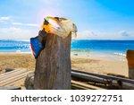 isla mujeres. mexico  november...   Shutterstock . vector #1039272751