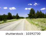 deserted summer road into the pine forest - stock photo