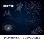 spider cobwebs various forms... | Shutterstock . vector #1039329361