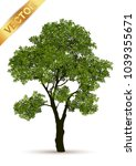beautiful tree on a white... | Shutterstock .eps vector #1039355671