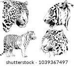 vector drawings sketches...   Shutterstock .eps vector #1039367497