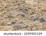 The Texture Of The Ground. The...