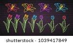 flowers set vector neon light... | Shutterstock .eps vector #1039417849