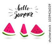 watermelon slice set. hello... | Shutterstock .eps vector #1039426039