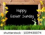 Narcissus  Bunny  Text Happy...