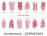 hand drawn set of culinary... | Shutterstock .eps vector #1039452601