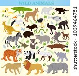 set of wild animals on a white... | Shutterstock .eps vector #1039464751