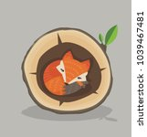 cute red fox sleeping inside a... | Shutterstock .eps vector #1039467481