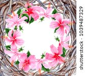 wildflower hibiscus pink flower ...   Shutterstock . vector #1039487329