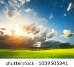 beatiful morning green field... | Shutterstock . vector #1039505341