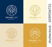 organic life logo set  graceful ... | Shutterstock .eps vector #1039536721