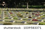the imphal war cemetery in... | Shutterstock . vector #1039583371