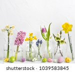spring flowers in different... | Shutterstock . vector #1039583845