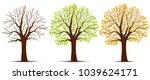seasons of tree  vector   Shutterstock .eps vector #1039624171