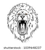 portrait of a lion. can be used ... | Shutterstock .eps vector #1039648237
