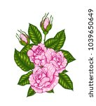 rose vector by hand drawing. | Shutterstock .eps vector #1039650649