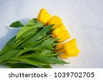 yellow tulips isolated on a... | Shutterstock . vector #1039702705