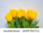 yellow tulips isolated on a... | Shutterstock . vector #1039702711