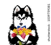 siberian husky dog with flowers....   Shutterstock .eps vector #1039759381