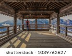 panoramic winter view of the... | Shutterstock . vector #1039762627