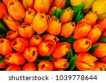 Artificial Colorful Tulips In...