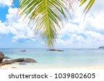 coconut getaway idyllic coast  | Shutterstock . vector #1039802605