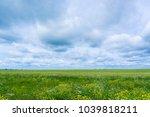 grass lawn fresh landscape  | Shutterstock . vector #1039818211