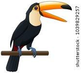 happy cute cartoon toucan.... | Shutterstock .eps vector #1039829257