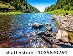 summer forest river water...   Shutterstock . vector #1039840264