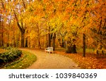 autumn park alley bench autumn... | Shutterstock . vector #1039840369