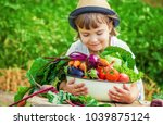 Child And Vegetables On The...