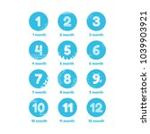 12 month template for newborns  ... | Shutterstock .eps vector #1039903921