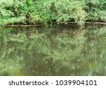 Small photo of river havel in germany