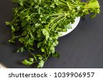 the parsley stands in the plate ... | Shutterstock . vector #1039906957