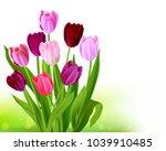 bouquet tulip spring banner | Shutterstock .eps vector #1039910485