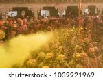 barsana  india   february 25 ... | Shutterstock . vector #1039921969