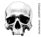 hand drawn dotted style skull.... | Shutterstock .eps vector #1039939021