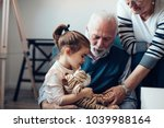 Stock photo grandparents playing with their granddaughter 1039988164